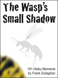 The Wasp's Small Shadow by Frank Dullaghan